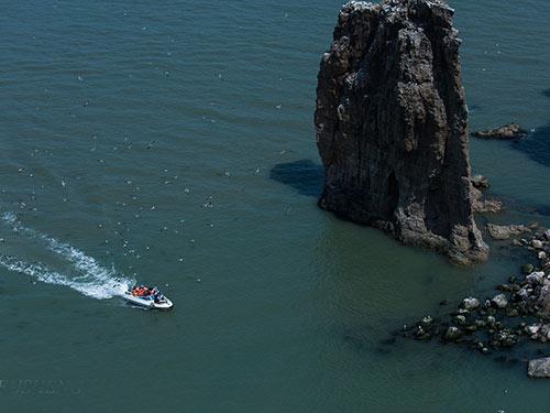"""2011年8月,中国野生动物保护协会经过多次考察调研后,授予海驴岛""""中国"""